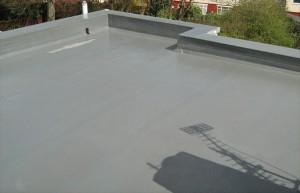 roofIMG_1284