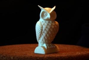owlDSCN3478