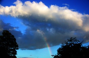 rainbowDSCN4127