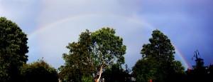 rainbowDSCN5352