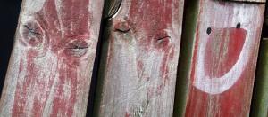 woodheadsDSCN6498