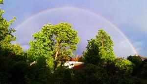 rainbowIMG_20200430